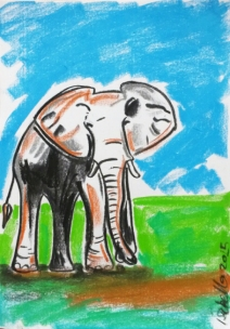 DAY 11 Daphne Sheldrick