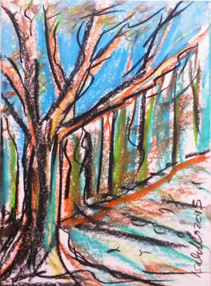 winterforest 6 dec jolanda